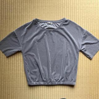 ザラ(ZARA)のzara ショート丈 カットソー(カットソー(半袖/袖なし))