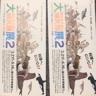 大哺乳類展2  招待券2枚セット(美術館/博物館)