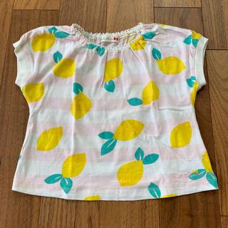 ニットプランナー(KP)のニットプランナー レモン柄 ボーダー トップス サイズ100(Tシャツ/カットソー)