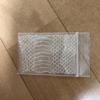 ヘビ 抜け殻2(爬虫類/両生類用品)