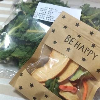 乾燥野菜 おやつ ブロッコリー りんご うさぎ 小動物 ペット (小動物)