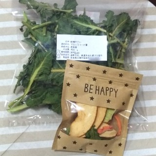 乾燥野菜 ペット おやつ ブロッコリー りんご うさぎ(小動物)