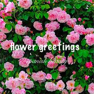 スパニッシュビューティー 四季咲き つるバラ カット苗 3本 即購入可(その他)