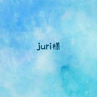juri様*専用(その他)
