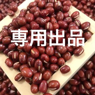 北海道産 とよみ大納言小豆 5kg