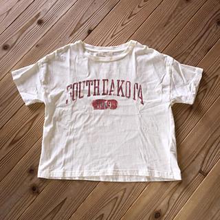セポ(CEPO)のcepo  Tシャツ M(Tシャツ(半袖/袖なし))