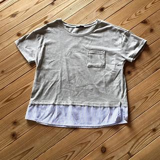 シマムラ(しまむら)のTシャツ M(Tシャツ(半袖/袖なし))
