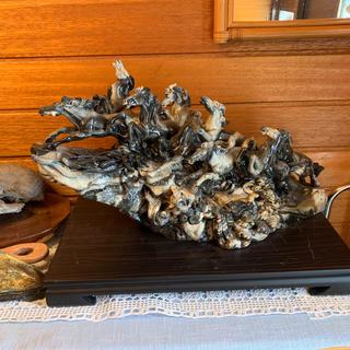 馬の置物 石彫の一刀彫り(彫刻/オブジェ)