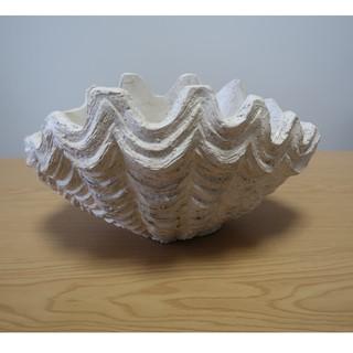 陶器のプランター(貝殻デザイン)(プランター)