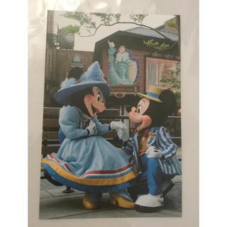 ディズニー(Disney)のディズニー ミキミニ  ポストカード(キャラクターグッズ)