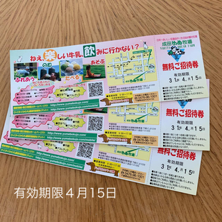 成田ゆめ牧場 入場券3枚(動物園)