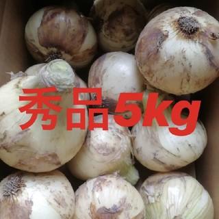 ★期間限定★淡路島新玉ねぎ 秀品Lサイズ5Kg