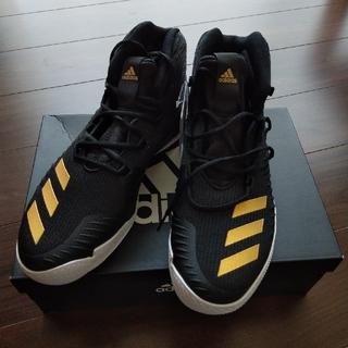adidas - アディダス バスケットシューズ 30cm