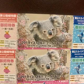 東山動物園 入園券 2枚セット チケット 東山動植物園(動物園)
