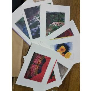 絵はがき(8枚セット)(写真/ポストカード)
