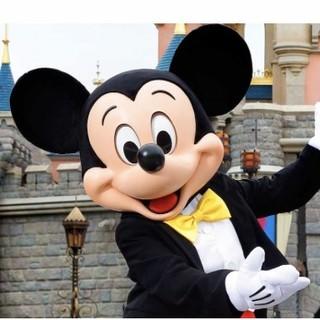 ディズニー(Disney)のゆき様😊同封です。ありがとうございます。🙇(テープ/マスキングテープ)