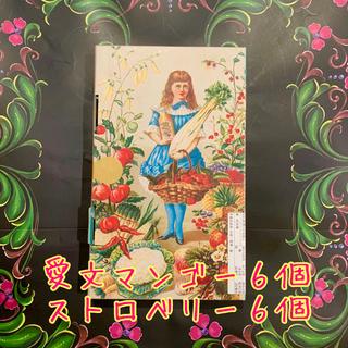 【新品・未開封】宮原眼科  フルーツヌガー  2種12個セット
