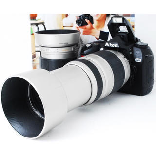 ニコン(Nikon)の★超名機★ビギナー向け★届いてすぐ使える★ニコン D70 300mm Wズーム!(デジタル一眼)