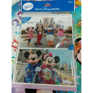 ディズニー(Disney)のディズニーリゾート 実写カレンダー 2019 【新品未開封】(カレンダー/スケジュール)