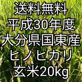 [送料無料] 30年度 大分県国東産 ヒノヒカリ玄米20kg