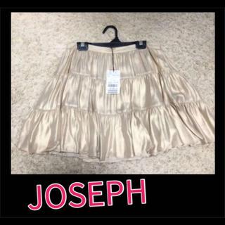 ジョゼフ(JOSEPH)のJOSEPH フレア スカート S 夏 春(ひざ丈スカート)