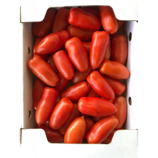 Pomodoro (ポモドーロ)1kg 食品/飲料/酒の食品(野菜)の商品写真