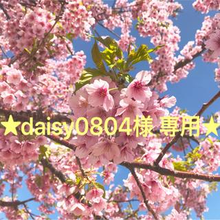 [新品]Shachihata おなまえスタンプ 大文字セット(はんこ)