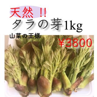 天然!!肉厚!! タラの芽 300g(野菜)