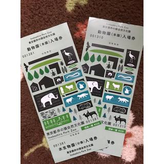 井の頭動物園 入場券 2枚(動物園)