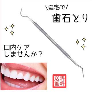 自宅で簡単ケア 歯石取り スケーラー オーラルケア ヤニ取り ペット ステンレス(歯ブラシ/デンタルフロス)