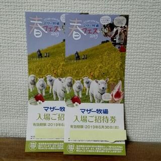マザー牧場 招待券2枚(動物園)
