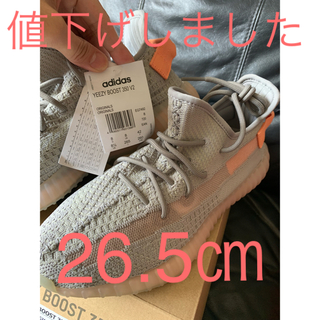 adidas - adidas Yeezy Boost 350 V2 True form