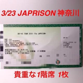 スカイハイ(SKYHi)のSKY-HI 2019 ツアー JAPRISON 3/23 神奈川 公演 1枚(国内アーティスト)
