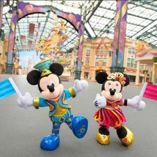 Disney - 2体セット ポージープラッシー ミッキー ミニー TDR 35周年 ぬいぐるみ