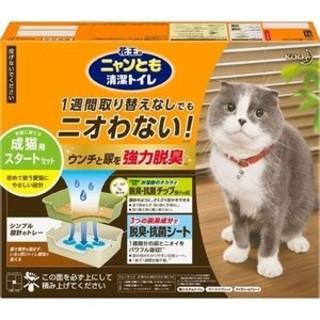 カオウ(花王)の猫トイレ(猫)