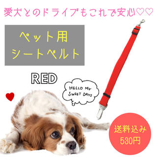 ペット用☆シートベルト【クリップ付き】 犬猫 調整可 530円(犬)