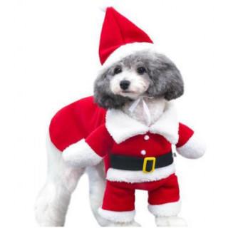 Lサイズ なりきり サンタ おもしろ ドッグウェア  ボンボンフード バックル(犬)