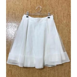 クローラ(CROLLA)のアクアガール  クローラ シア レーススカート フレア(ひざ丈スカート)