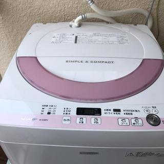 SHARP - ◆SHARP◆全自動洗濯機◆2015年 ES-G55PC