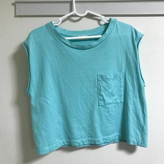 インパクティスケリー(Inpaichthys Kerri)のinpaichthys Kerri Tシャツ(Tシャツ(半袖/袖なし))