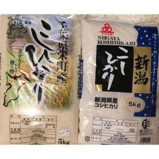 お米 10キロ コシヒカリ