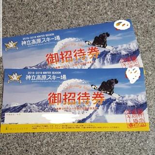 神立高原 リフト券 2枚セット 神立高原スキー場 招待券 無料券(スキー場)