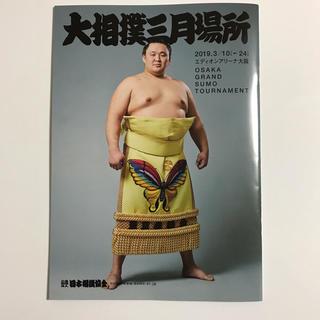 大相撲 非売品 パンフレット 新品(相撲/武道)