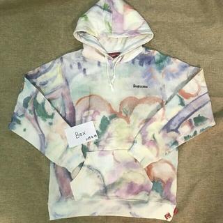 Supreme - Supreme Landscape Hooded Sweatshirt Mサイズ