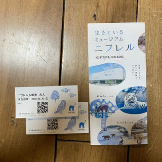 ニフレル入館券 大人2枚 ¥4000相当 ペアチケット NIFREL水族館(水族館)