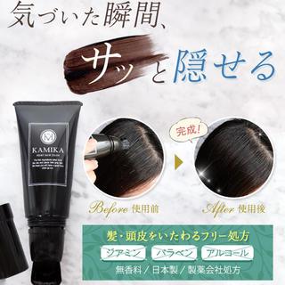 KAMIKA ポイントヘアカラー(カラーリング剤)
