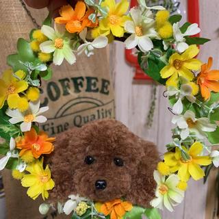 動物ぽんぽん トイプードル お花のリース(ぬいぐるみ)