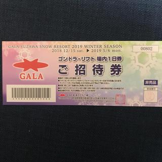 ゴンドラ・リフト券(スキー場)
