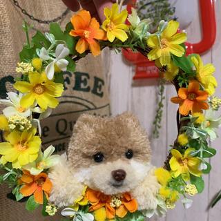動物ぽんぽん ポメラニアン お花のリース(ぬいぐるみ)