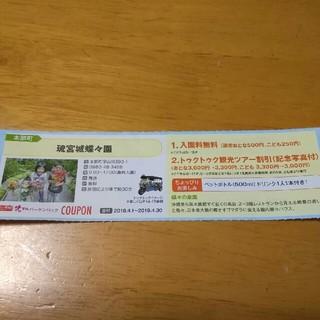 花マルバーゲンパック  琉宮城入場券1グループ全員入場券(遊園地/テーマパーク)